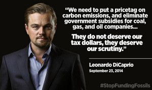 Courtesy of Ecocide Alert