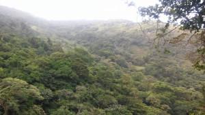 CR-Mountainside